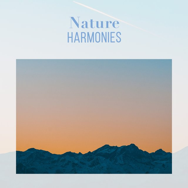 Soothing International Nature Harmonies