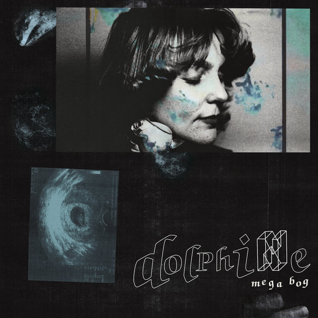Cover art for album Dolphine by Mega Bog
