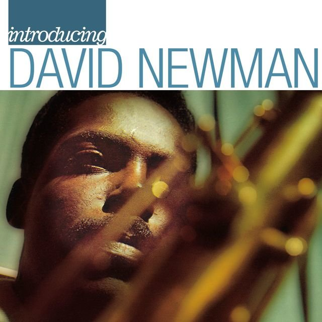 Introducing David Newman