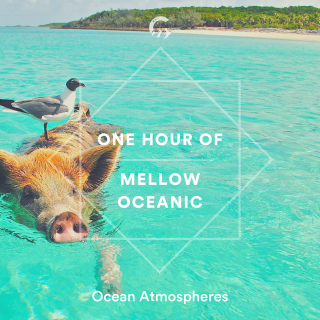 1 Hour of Mellow Oceanic