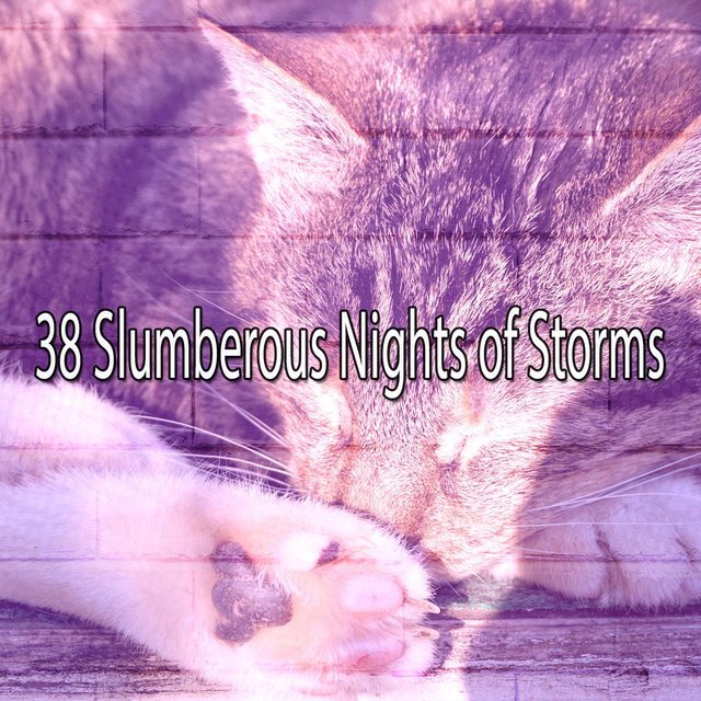 38 Slumberous Nights of Storms