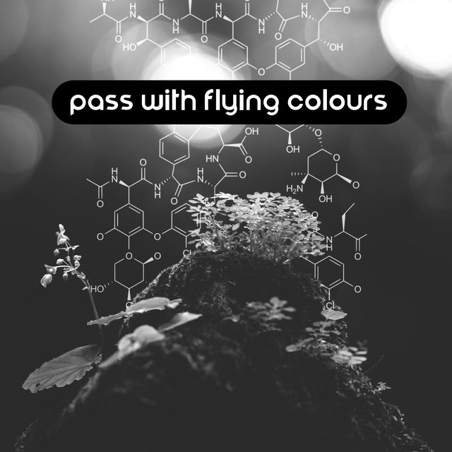 Pass with Flying Colours: Concentration Supporting Music to Help You Prepare for an Important Exam or Test