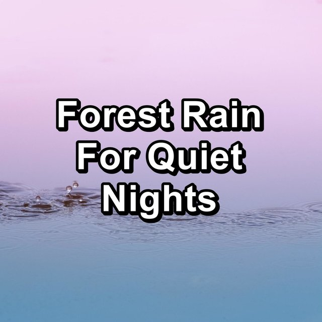 Forest Rain For Quiet Nights