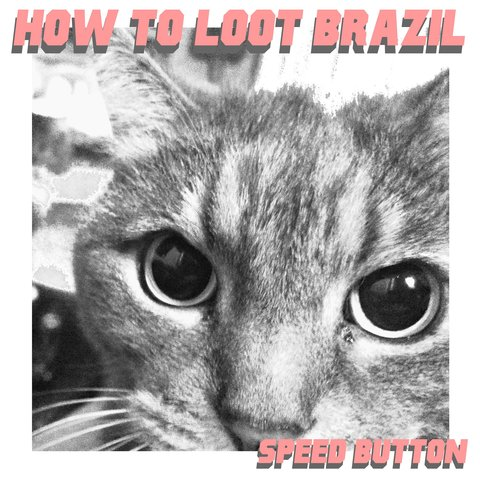 How To Loot Brazil