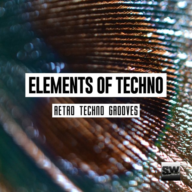 Elements Of Techno (Retro Techno Grooves)