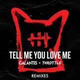 Tell Me You Love Me (Michael Feiner Remix)