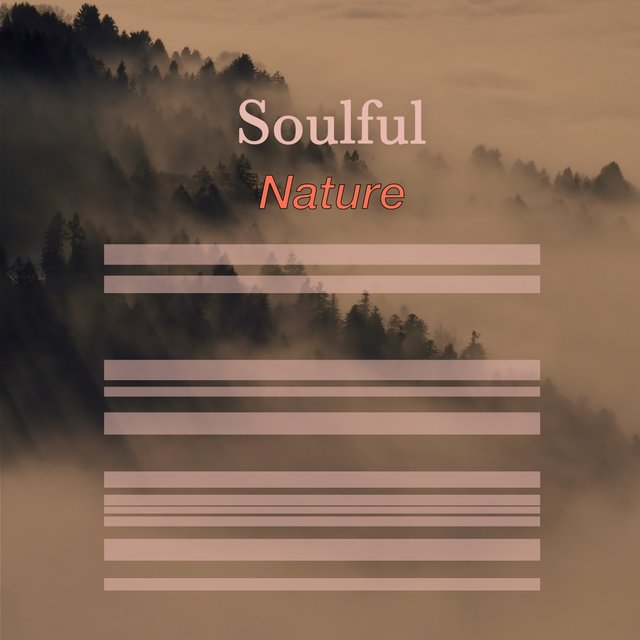 # 1 Album: Soulful Nature