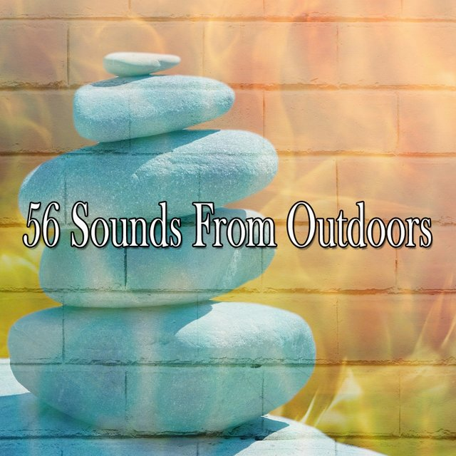 56 Sounds from Outdoors