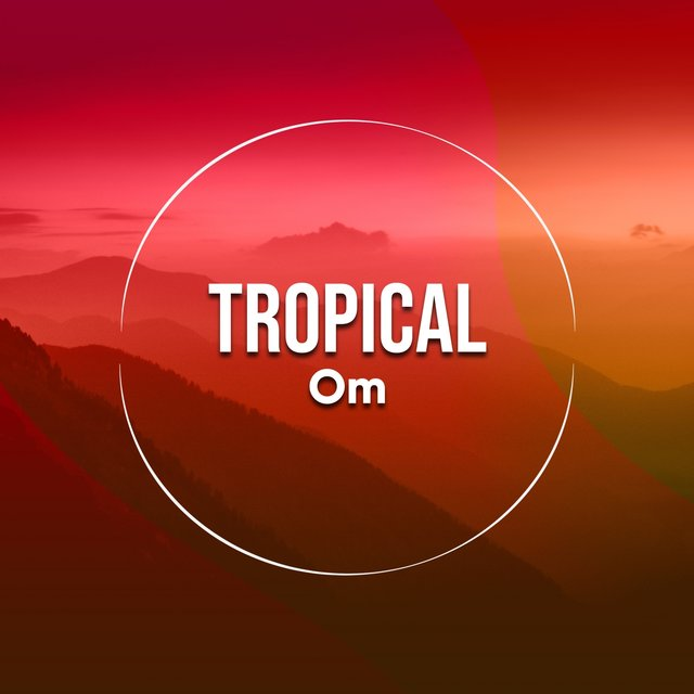 # 1 Album: Tropical Om