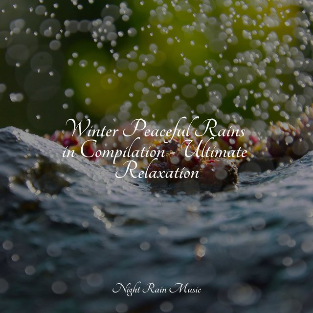 Winter Peaceful Rains in Compilation - Ultimate Relaxation