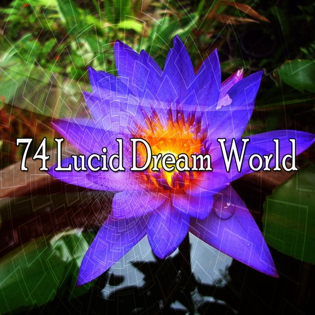 74 Lucid Dream World