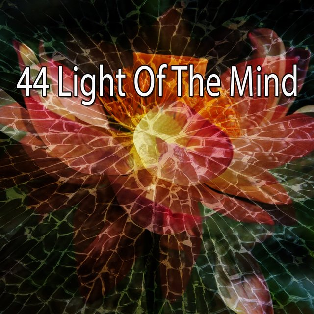 44 Light of the Mind
