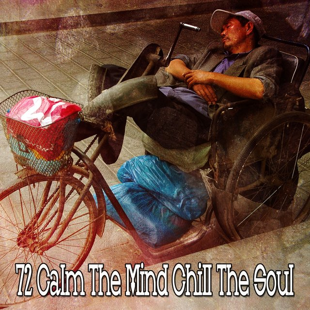72 Calm the Mind Chill the Soul