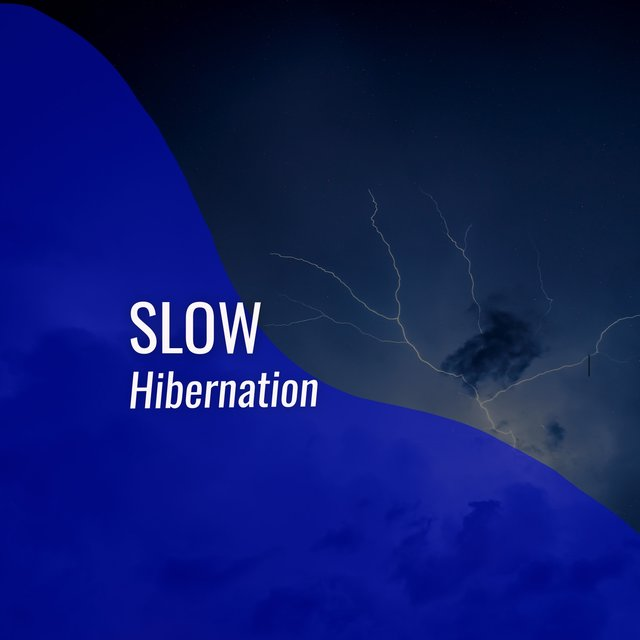 # 1 Album: Slow Hibernation