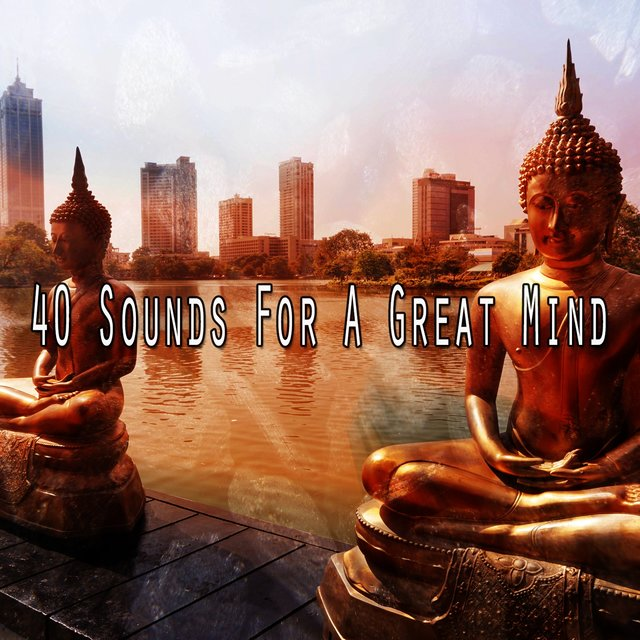 40 Sounds for a Great Mind