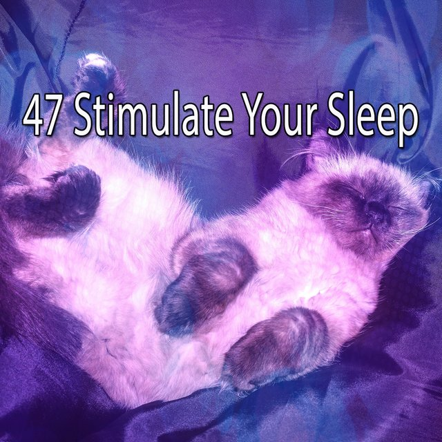 47 Stimulate Your Sleep