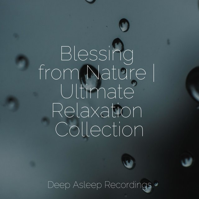 Blessing from Nature | Ultimate Relaxation Collection