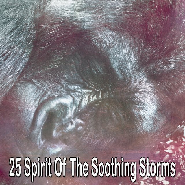 25 Spirit of the Soothing Storms