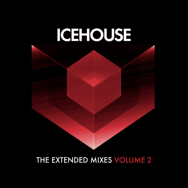 The Extended Mixes Vol. 2