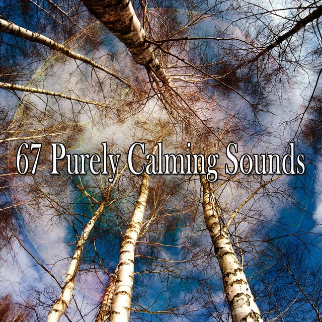 67 Purely Calming Sounds