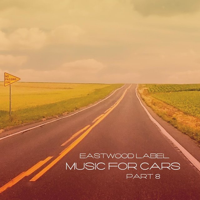 Music For Cars, Vol. 8