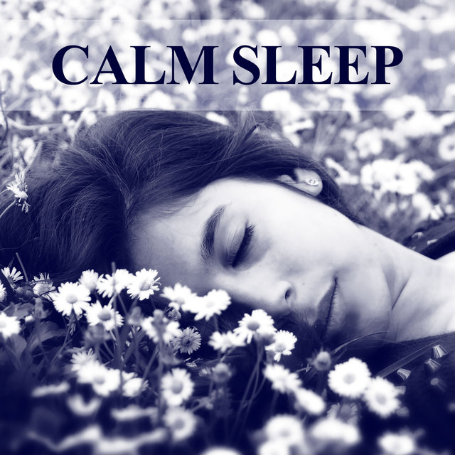 Image result for image of Calm Noise for better sleep