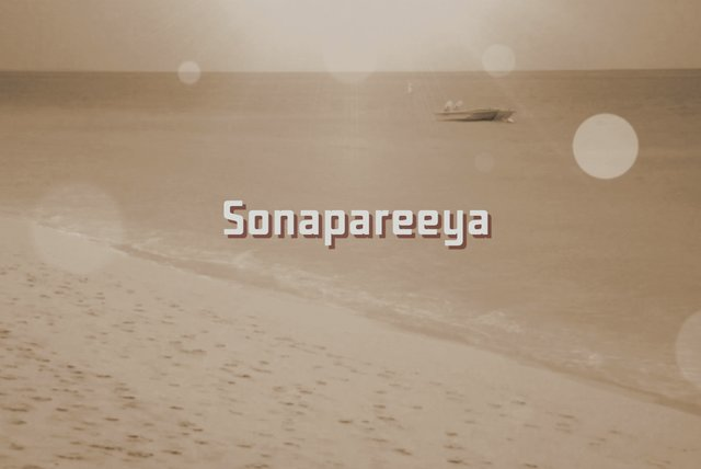 Sonapareeya (Lyric Video)