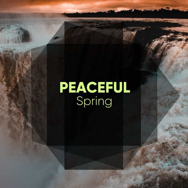 # 1 Album: Peaceful Spring