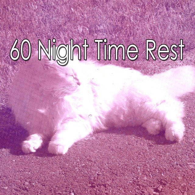 60 Night Time Rest