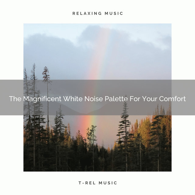 The Magnificent White Noise Palette For Your Comfort