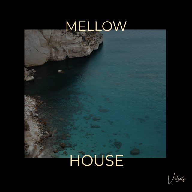 Mellow House Vibes