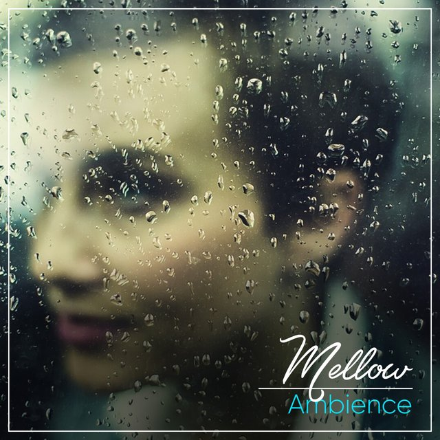 # 1 A 2019 Album: Mellow Ambience