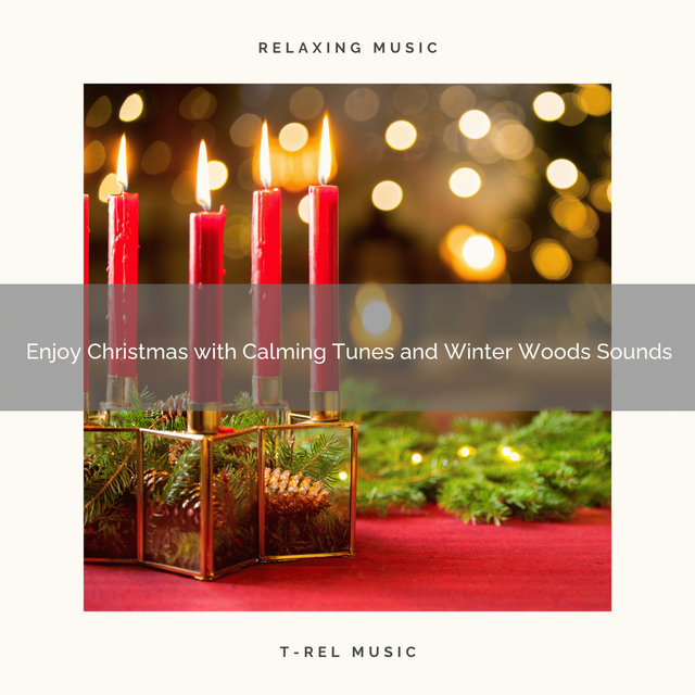 Enjoy Christmas with Calming Tunes and Winter Woods Sounds