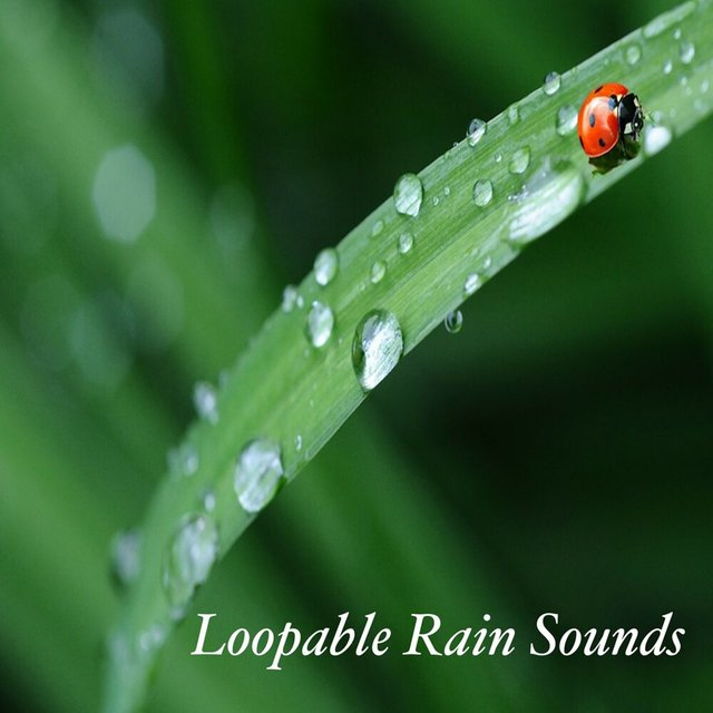 Loopable Rain Sounds: Trouble Sleeping, Insomnia, Relaxation, Meditation