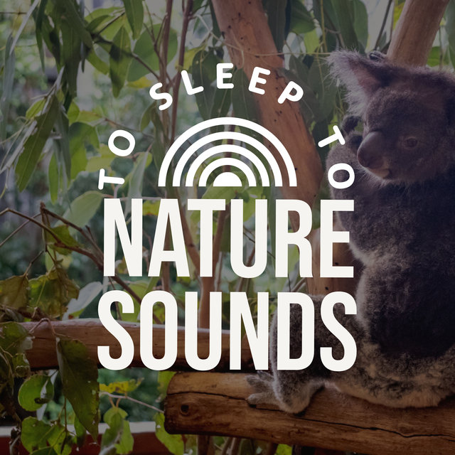 Nature Sounds To Sleep To