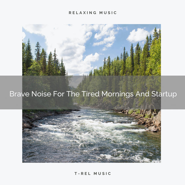 Brave Noise For The Tired Mornings And Startup