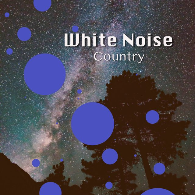 # 1 Album: White Noise Country