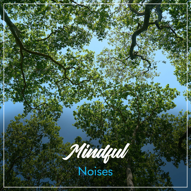 #2019 Mindful Noises for Relaxation & Mindfulness