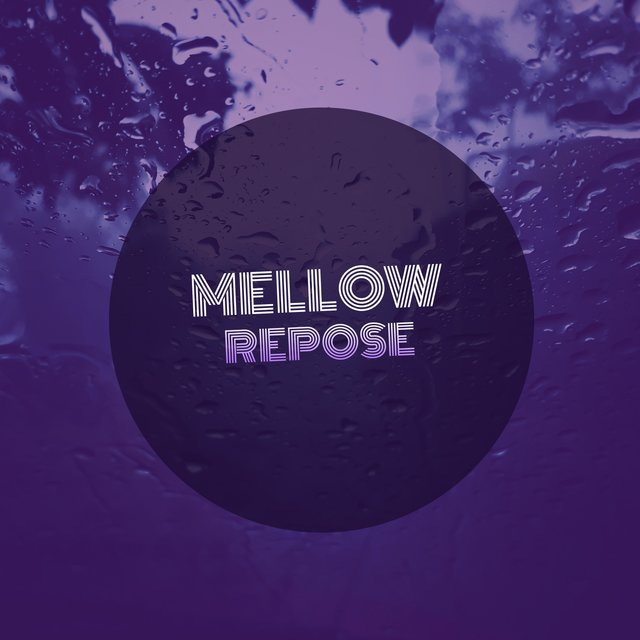# 1 A 2019 Album: Mellow Repose