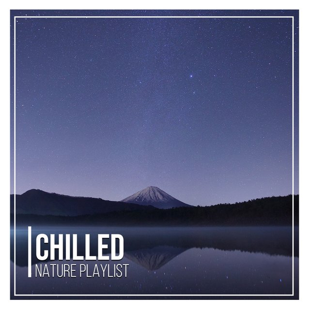 # 1 Album: Chilled Nature Playlist