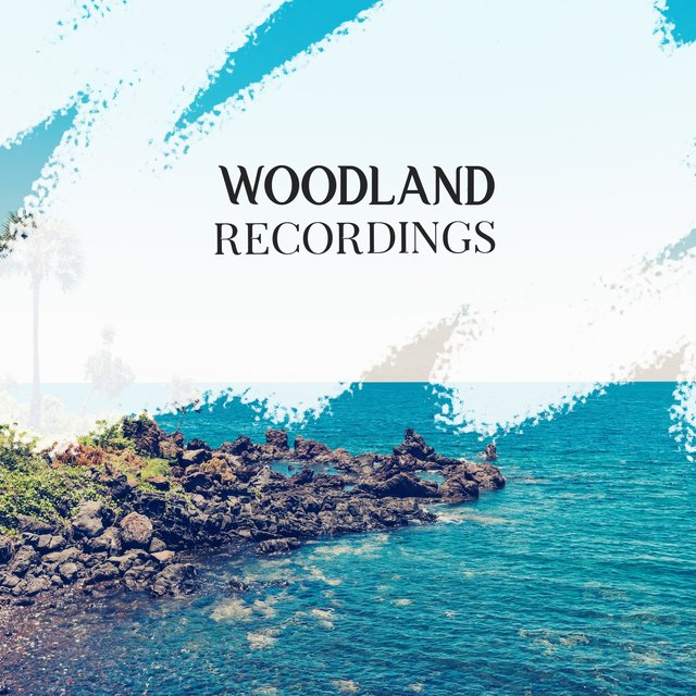 Background Garden Woodland Recordings