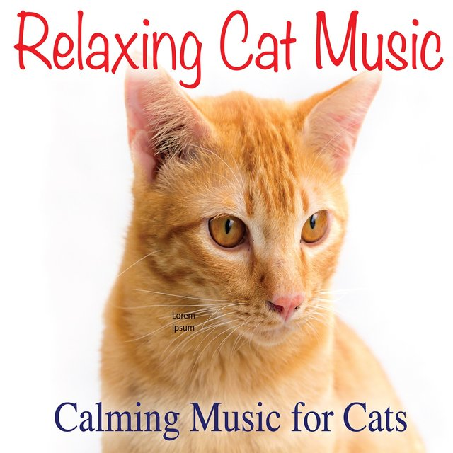 Relaxing Cat Music: Calming Music for Cats