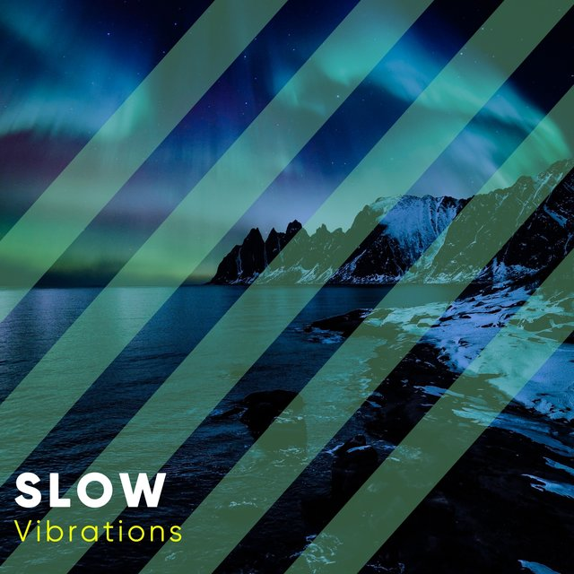 # 1 Album: Slow Vibrations