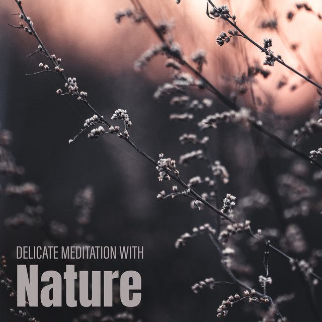 Delicate Meditation with Nature – Calmness & Tranquil, Stress Relief, Calm Down, Relaxing Sounds Nature, Ambient Music, Yoga Meditation