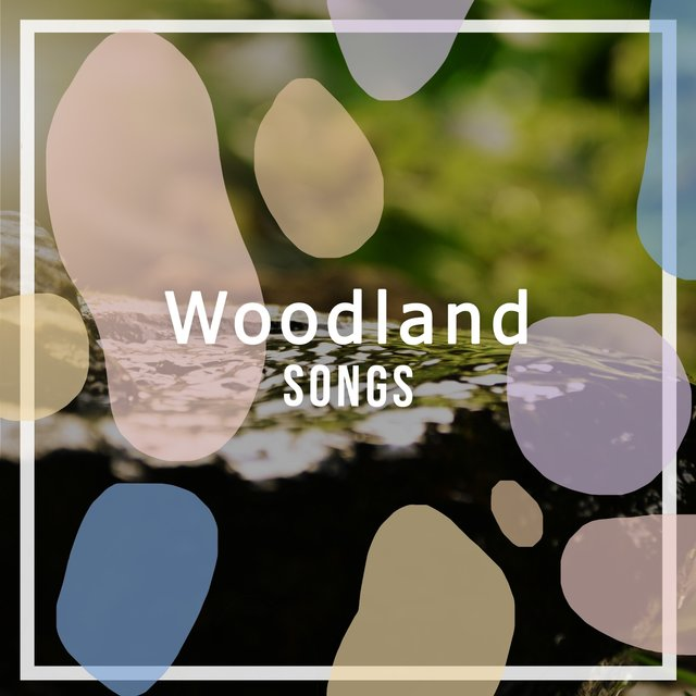 Relaxing International Woodland Songs