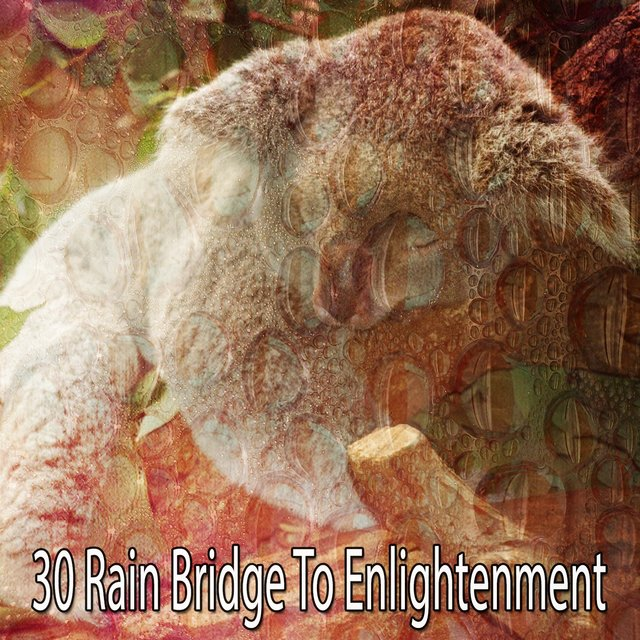 30 Rain Bridge to Enlightenment