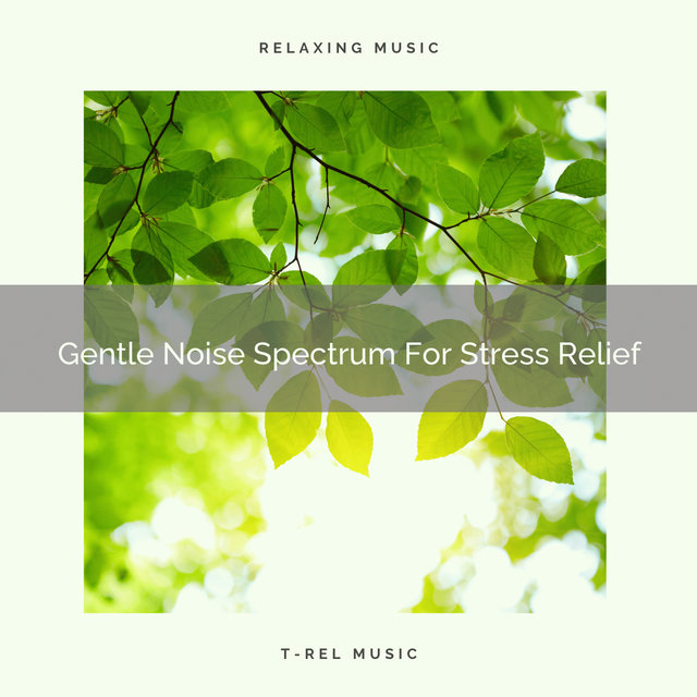 Gentle Noise Spectrum For Stress Relief