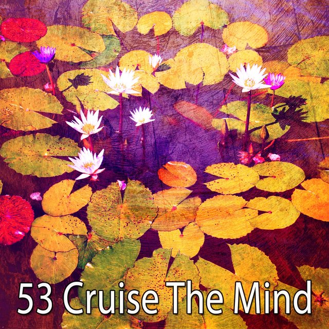 53 Cruise the Mind