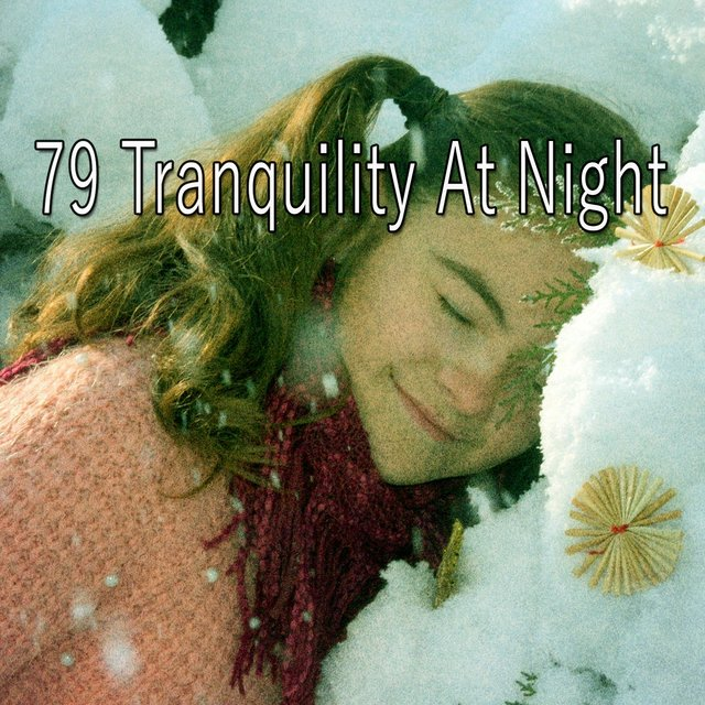 79 Tranquility At Night