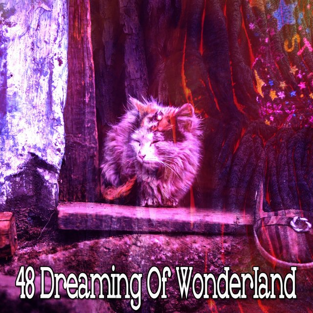 48 Dreaming of Wonderland